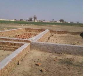 260 sqft, Plot in Aarvanss Royal Paradise Dadri, Greater Noida at Rs. 0.0100 Cr