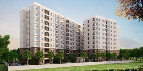 335 sqft, 1 bhk Apartment in Builder Project Jagatpura, Jaipur at Rs. 6.9500 Lacs