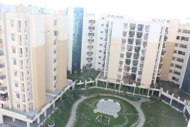 1100 sqft, 3 bhk Apartment in Builder jurs country Jwalapur Main Road, Haridwar at Rs. 40.0000 Lacs