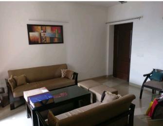 2200 sqft, 3 bhk BuilderFloor in HUDA Plot Sector 46 Sector 46, Gurgaon at Rs. 27000