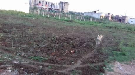 801 sqft, Plot in Builder Mahatma Gandhi Nagar chekkarayapuram Kovur, Chennai at Rs. 21.6300 Lacs