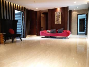 5875 sqft, 4 bhk Apartment in DLF The Aralias Sector 42, Gurgaon at Rs. 3.0000 Lacs