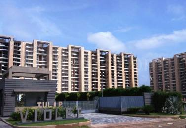 1350 sqft, 3 bhk Apartment in Tulip Violet Sector 69, Gurgaon at Rs. 27000