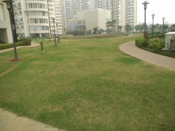 1950 sqft, 3 bhk Apartment in Emaar Palm Drive Sector 66, Gurgaon at Rs. 1.6000 Cr