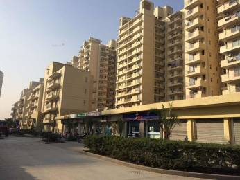 1743 sqft, 3 bhk Apartment in CHD Avenue 71 Sector 71, Gurgaon at Rs. 1.1500 Cr