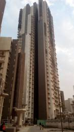 2398 sqft, 3 bhk Apartment in Ireo Victory Valley Sector 67, Gurgaon at Rs. 1.9300 Cr