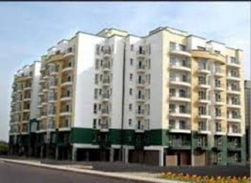 1150 sqft, 2 bhk Apartment in RPS Green Valley Sector 42, Faridabad at Rs. 52.5000 Lacs