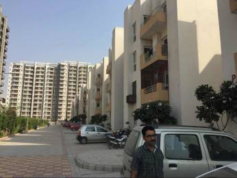 975 sqft, 2 bhk Apartment in KLJ Platinum Plus Sector 77, Faridabad at Rs. 32.0000 Lacs