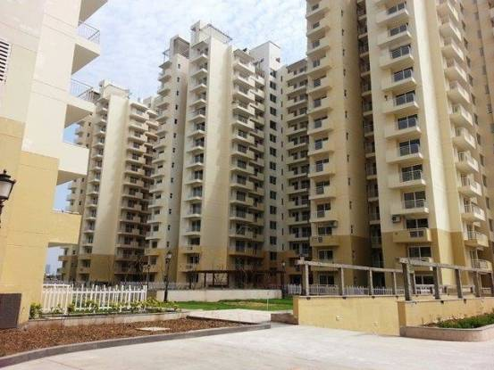 1198 sqft, 2 bhk Apartment in CHD Avenue 71 Sector 71, Gurgaon at Rs. 85.0000 Lacs