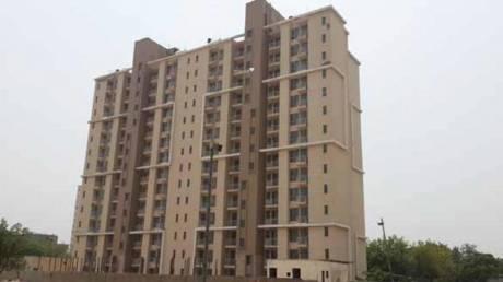 1355 sqft, 3 bhk Apartment in Unitech Uniworld Gardens 2 Sector 47, Gurgaon at Rs. 1.1000 Cr
