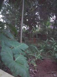 2200 sqft, Plot in Builder Residential land Mini Bypass Tripunithura Road, Kochi at Rs. 65.0000 Lacs