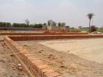 1035 sqft, Plot in Builder bkr vatika city society SECTOR 29, Faridabad at Rs. 10.0000 Lacs
