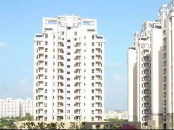 1805 sqft, 3 bhk Apartment in Orchid Petals Sector 49, Gurgaon at Rs. 28000