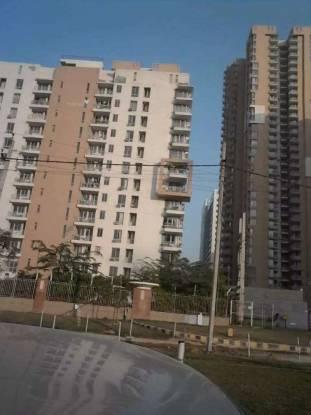2600 sqft, 4 bhk Apartment in Tulip Purple Sector 69, Gurgaon at Rs. 25000
