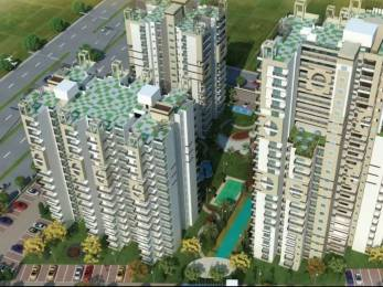 1015 sqft, 2 bhk Apartment in Cosmos Shivalik Homes UPSIDC Surajpur Site, Greater Noida at Rs. 32.0000 Lacs