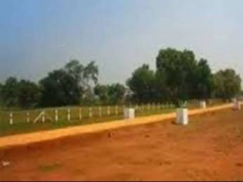 1215 sqft, Plot in Builder River Side Estate Dera Bassi, Chandigarh at Rs. 21.3000 Lacs