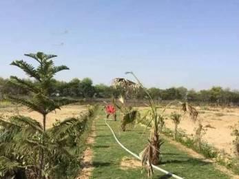 1350 sqft, Plot in Builder plot for investment Gurgaon Road, Gurgaon at Rs. 8.2500 Lacs