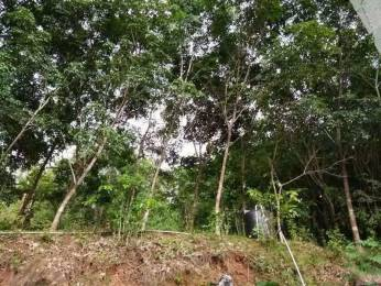 19602 sqft, Plot in Builder Project Kannur Mattannur Road, Kannur at Rs. 40.5559 Lacs