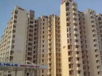 1133 sqft, 2 bhk Apartment in SRS Royal Hills Sector 87, Faridabad at Rs. 9000
