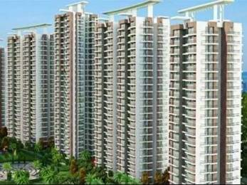 1595 sqft, 3 bhk Apartment in Ace Aspire Techzone 4, Greater Noida at Rs. 56.0000 Lacs