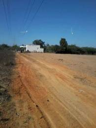 1750 sqft, Plot in Builder Project Tirupati Bypass Road, Tirupati at Rs. 30.0000 Lacs