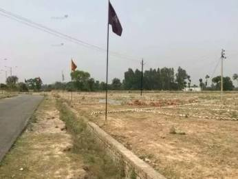 1500 sqft, Plot in Builder Project Amausi, Lucknow at Rs. 6.0000 Lacs