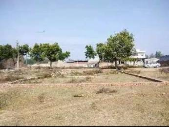 2484 sqft, Plot in Builder Sector 33 Hisar Sector 33, Hisar at Rs. 82.3300 Lacs