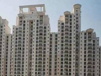 2100 sqft, 4 bhk Apartment in DLF Richmond Park Sector 27, Gurgaon at Rs. 50000