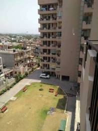 2350 sqft, 3 bhk Apartment in Builder Project Panchkula Sec 17, Chandigarh at Rs. 20000