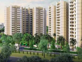 1164 sqft, 2 bhk Apartment in Stellar MI Citihomes Omicron, Greater Noida at Rs. 35.0000 Lacs