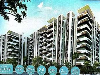 1700 sqft, 3 bhk Apartment in Builder Project Vidya Nagar, Guntur at Rs. 70.0000 Lacs
