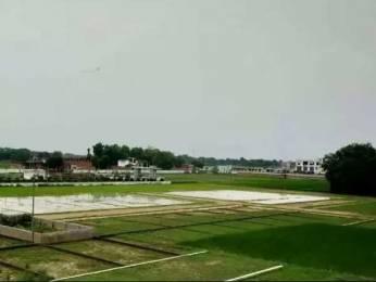 1000 sqft, Plot in Builder Elite kashiyana AllahabadVaranasi Road, Allahabad at Rs. 7.5000 Lacs