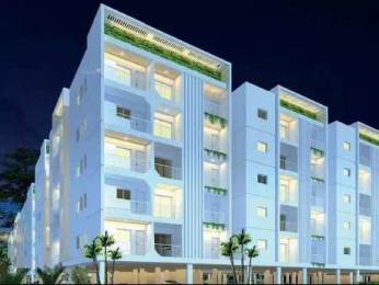 1250 sqft, 2 bhk Apartment in Builder Project Rajahmundry, East Godavari at Rs. 31.2500 Lacs