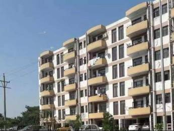 750 sqft, 1 bhk Apartment in Builder Project Sector 63, Chandigarh at Rs. 15500