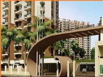 1175 sqft, 2 bhk Apartment in Builder Galaxy North Avenue II Gaur City 2 Noida xtension Gaur City 2, Greater Noida at Rs. 9500