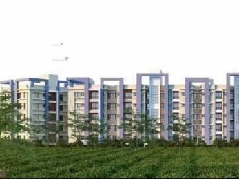 768 sqft, 2 bhk Apartment in Builder Manakamna24 Devidanga, Siliguri at Rs. 17.5000 Lacs