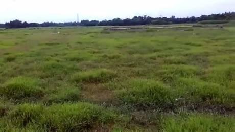 1440 sqft, Plot in Builder Residental plots and land Budge budge Budge Budge, Kolkata at Rs. 3.2000 Lacs