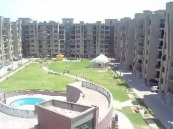1850 sqft, 3 bhk Apartment in Hanumant Bollywood Heights Sector 20, Panchkula at Rs. 55.0000 Lacs