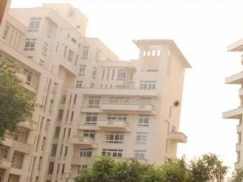 3253 sqft, 4 bhk Apartment in Silverglades The Ivy Sector 28, Gurgaon at Rs. 3.8000 Cr