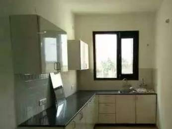 2500 sqft, 3 bhk BuilderFloor in Builder Project Brs nagar, Ludhiana at Rs. 16000