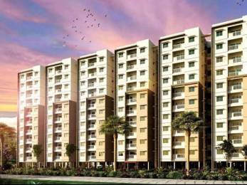 260 sqft, 1 bhk Apartment in Builder Kenworth by Provident Rajendra Nagar, Hyderabad at Rs. 19.0000 Lacs