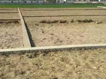 1000 sqft, Plot in Paradise Avenue Infraventures Gomti Gardenia Deva Road, Lucknow at Rs. 8.5000 Lacs