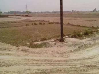 1000 sqft, Plot in Builder chandra kashiyana Ram Nagar Industrial Area, Varanasi at Rs. 8.5000 Lacs