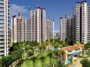 1795 sqft, 3 bhk Apartment in Prateek Grand Carnesia Pratap Vihar, Ghaziabad at Rs. 84.0000 Lacs