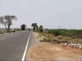 1503 sqft, Plot in Builder New Project Amaravathi, Guntur at Rs. 17.5350 Lacs