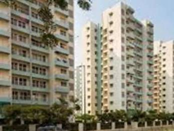 1372 sqft, 3 bhk Apartment in Godrej Garden City Near Nirma University On SG Highway, Ahmedabad at Rs. 52.0000 Lacs