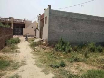 1125 sqft, Plot in Builder Project Kurali Road, Mohali at Rs. 6.0000 Lacs