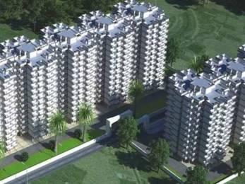 800 sqft, 2 bhk Apartment in Pareena Laxmi Apartments Sector 99A, Gurgaon at Rs. 18.6416 Lacs
