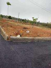 1980 sqft, Plot in Builder Project Bongloor, Hyderabad at Rs. 34.1000 Lacs