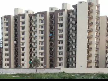 1155 sqft, 2 bhk Apartment in Maya Garden3 EXT VIP Rd, Zirakpur at Rs. 27.0000 Lacs